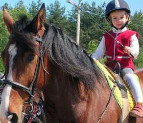 Иппотерапия, конный спорт, верховая езда. Иппотерапия - лечебная верховая езда.